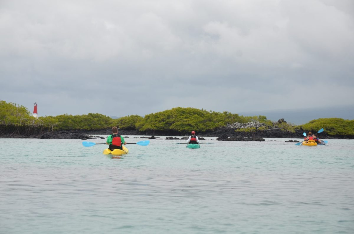 Kayaking on Isabela Island. Photo courtesy of Galakiwi