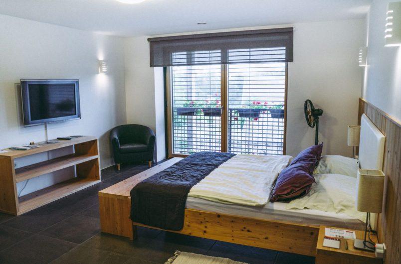 Eastern Europe Slovenia AMS Beagle hotel-02075