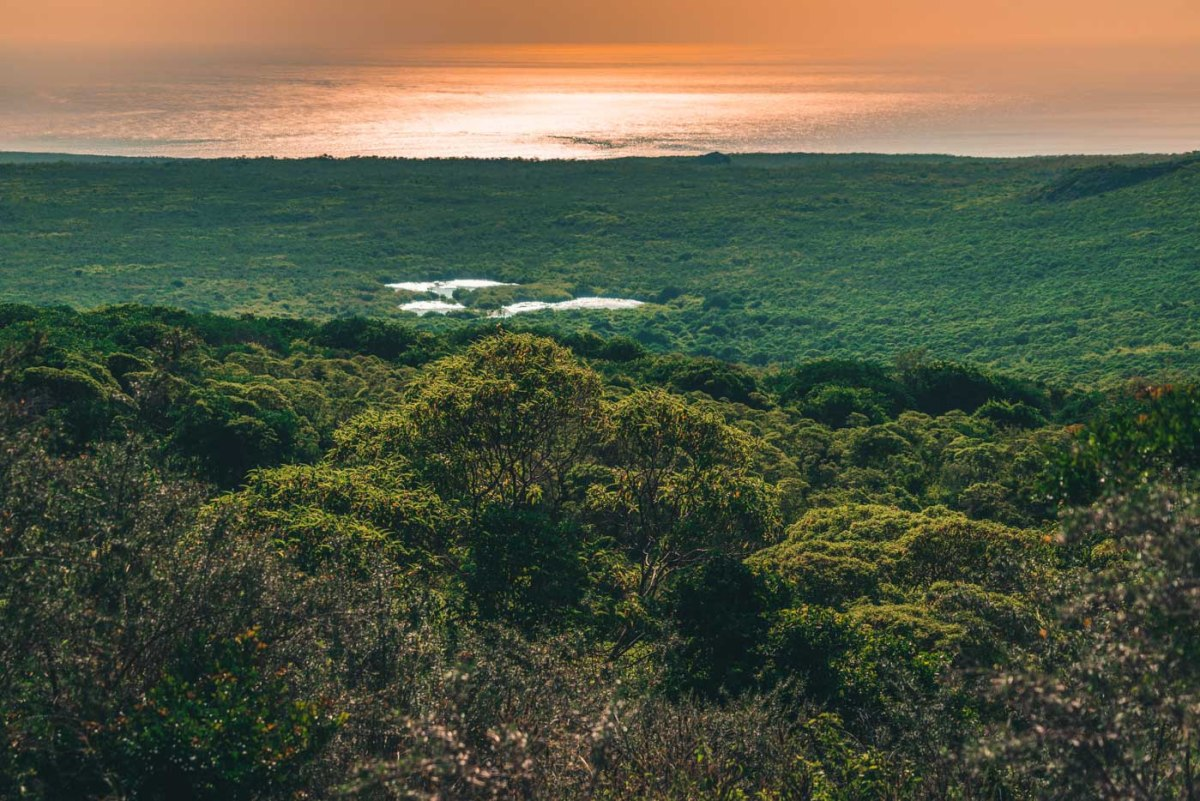 Sweeping views of lush highlands on Floreana Island, Galapagos
