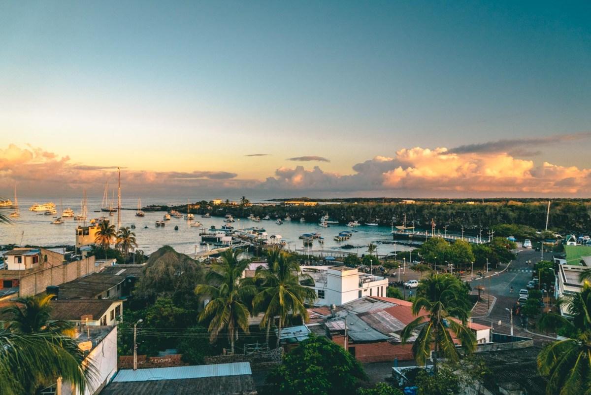 What to do on Santa Cruz Island, Galapagos | Drink Tea & Travel