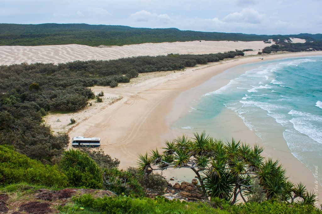 Fraser Island Tour: View from the top of Indian Head