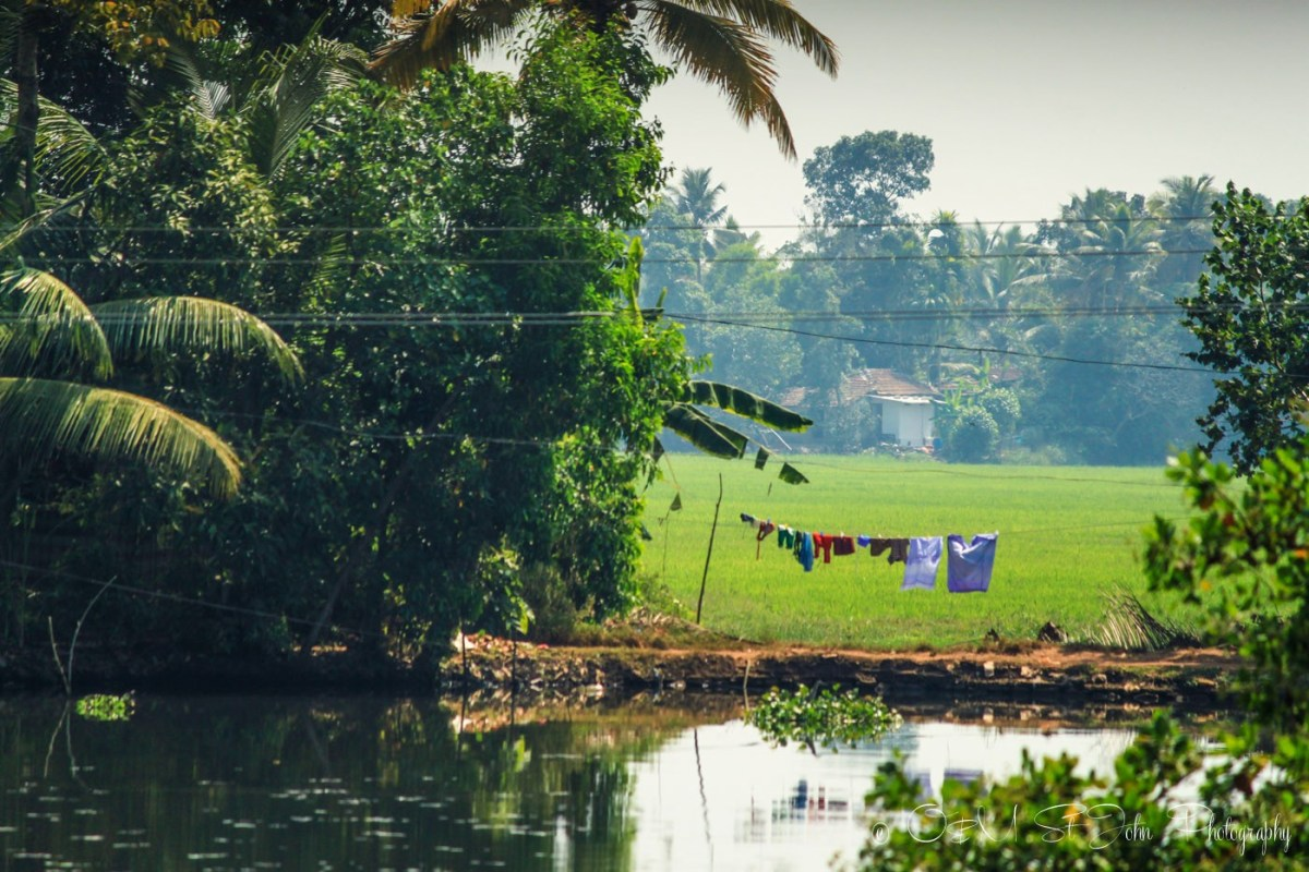 Kerala Backwaters. India