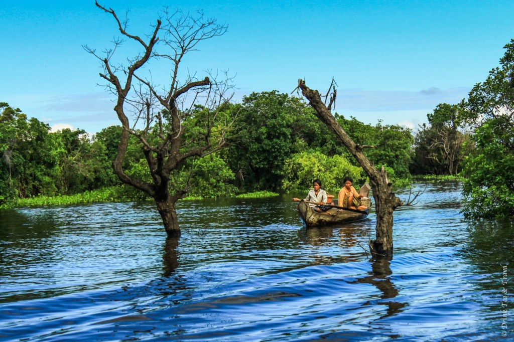Local women navigate through the mangroves in Kampong Phluk