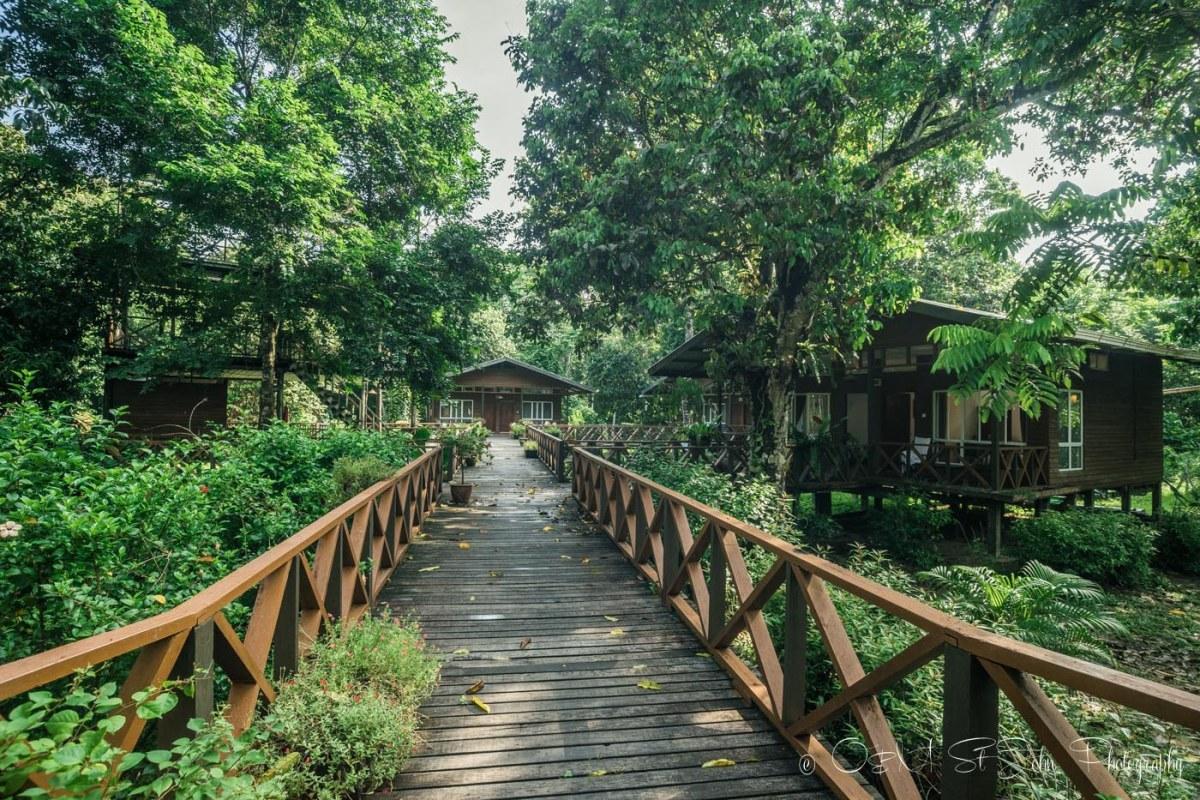 Borneo Nature Lodge, Kinabatangan River, Sabah. Malaysian Borneo