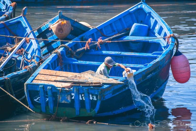 Morocco Essaouira-3508