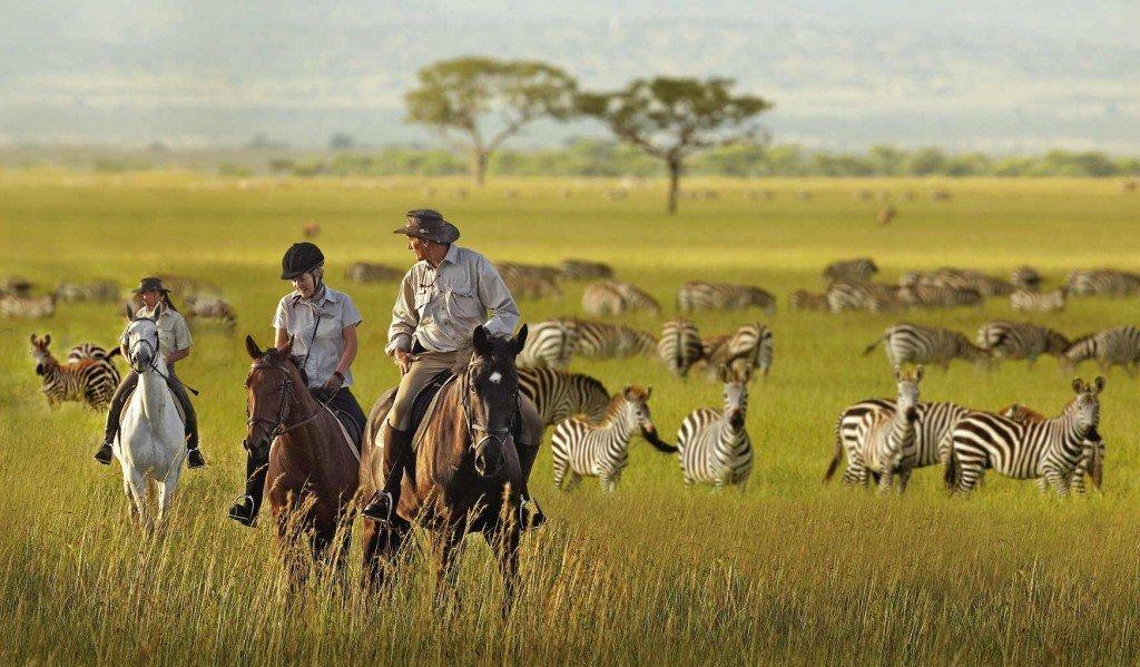 Serengeti National Park, Tanzania, Africa