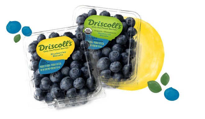 Blueberries & Organic Blueberries | Driscoll's
