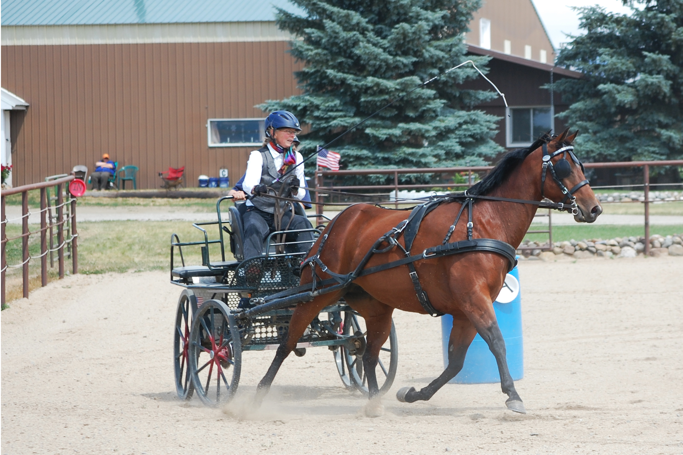 Fraser School of Driving – Teaching people how to drive horses to