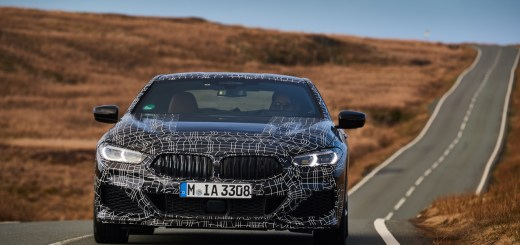 BMW 8 SERIES, 5.5.INTV