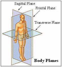 body-planes-2