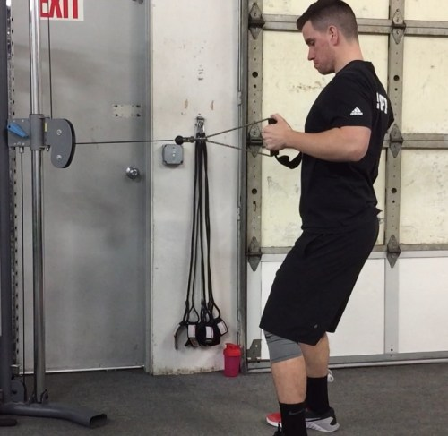 Standing Cable Row Finish
