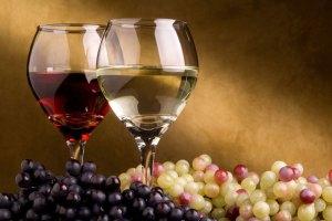 Chauffeur privé Bordeaux : oenotourisme