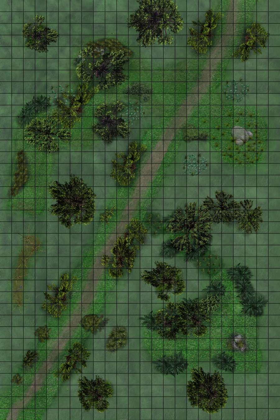 Dragons And Map Dungeons Swamp