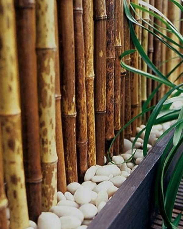 Bamboo Wall Garden Wall Ideas