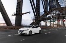 2018 Nissan LEAF 262