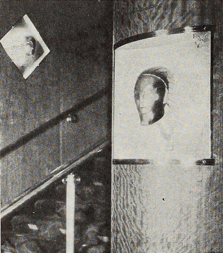 Detail of Wall Masks.