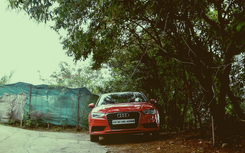 audi parked under tree