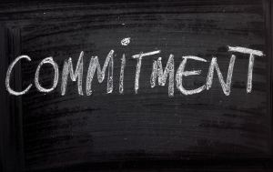10 Sample Commitments