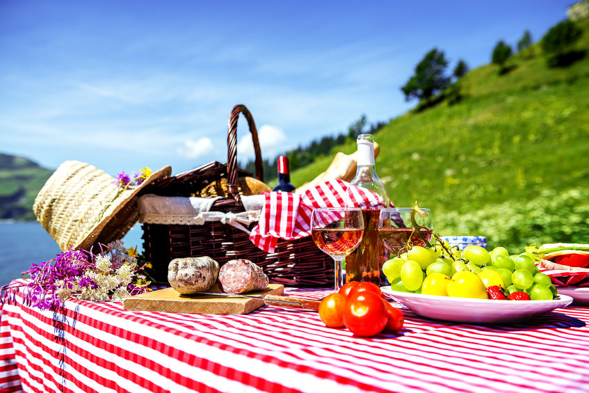 tasted picnic on the grass near a lake