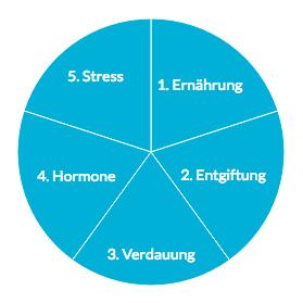Ganzheitliche Behandlung von Akne - Kreisdiagramm