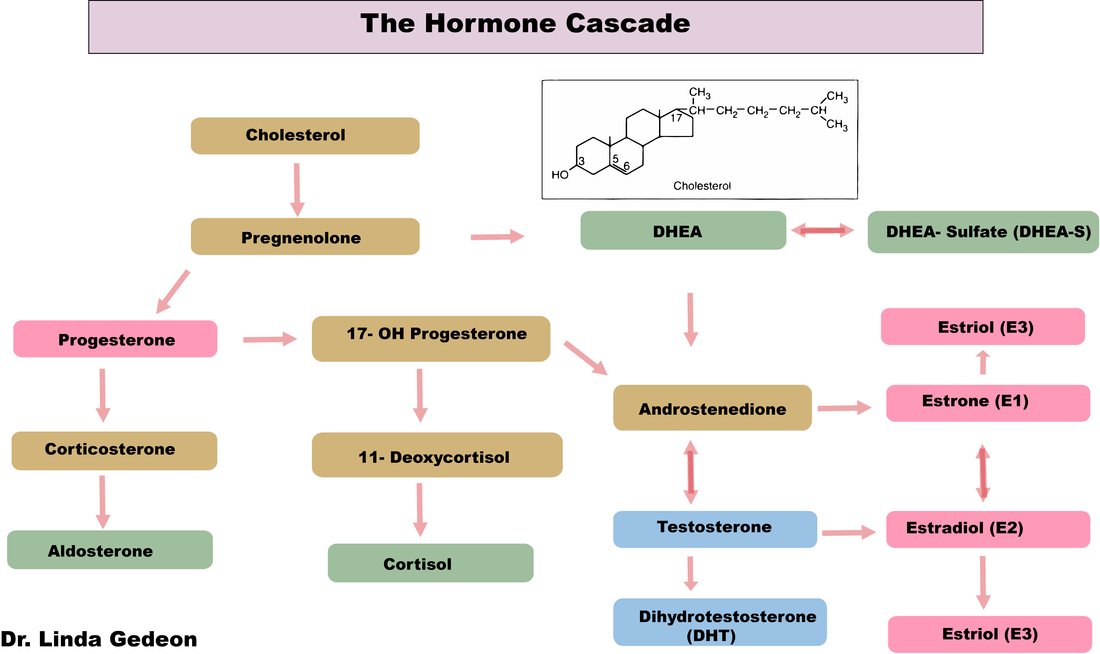 hormones The endocrine system is made up of organs and tissues that produce hormones hormones are natural chemicals produced in one location, released into the bloodstream, then used by other target organs and systems hormones control the target organs.