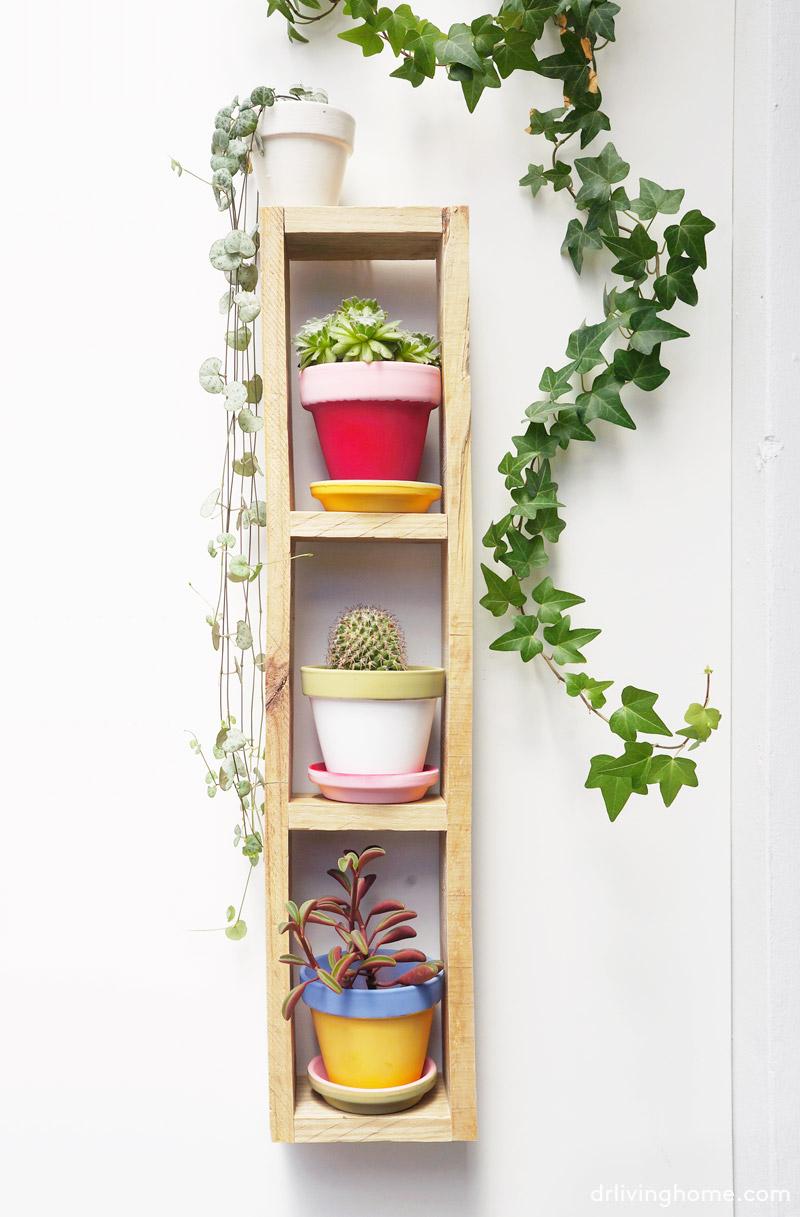 Diy jard n vertical mini en 4 pasos decoraci n online for Jardin vertical en casa