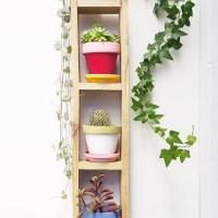 Diy jardín vertical mini en 4 pasos