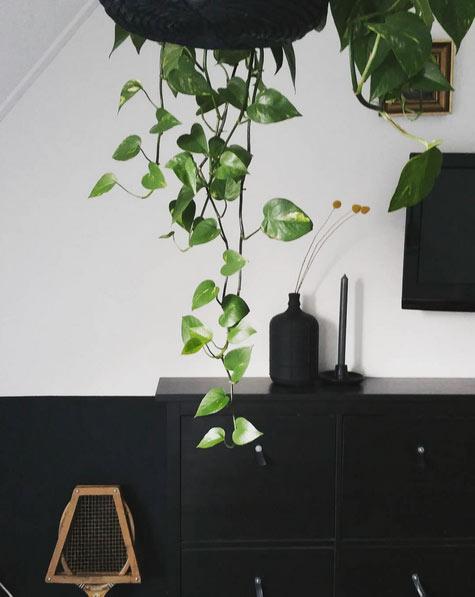 Cómo decorar en negro