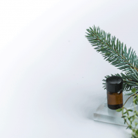 Black-Spruce-Essential-Oil-Uses-and-Benefits-F