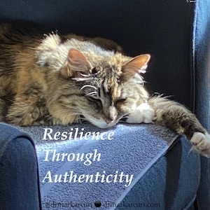 Resilience in Tough Times