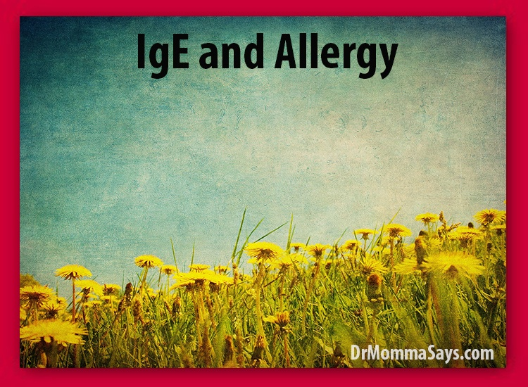 Dr. Momma shares insightful information about IgE and allergy which is important for understanding the process that occurs with true allergy disease.