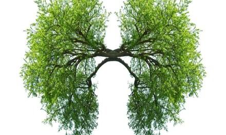 Frekans Tıbbı (Biorezonans) Yöntemi ile Astım Tedavisi