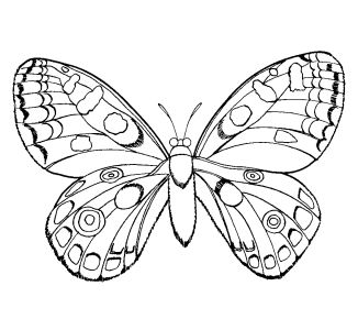 girls coloring pages arautk
