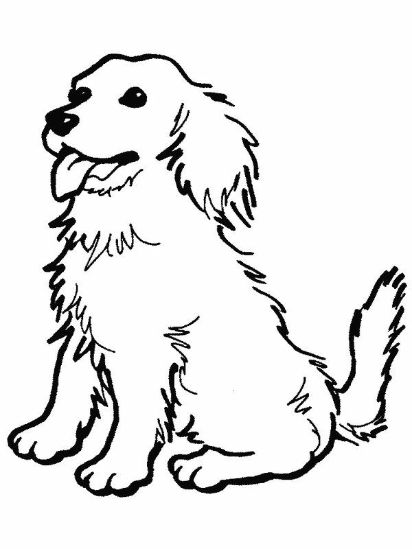 these dog coloring pages animal coloring pages for kids dogs