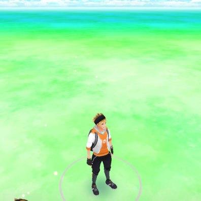 pokemon go screenshot 1