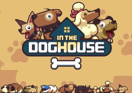 in-the-dog-house