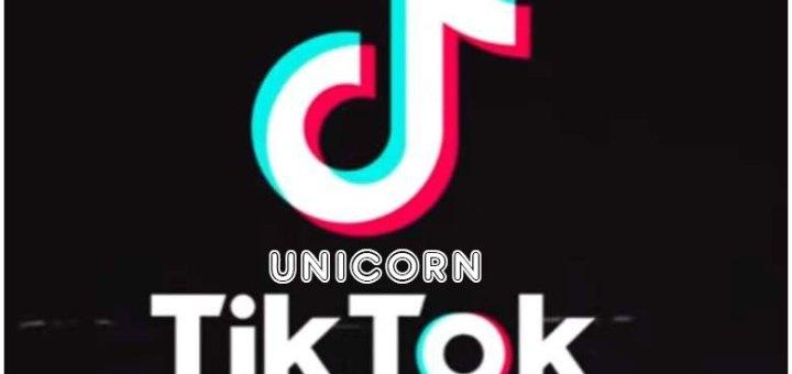 tiktok unicorn ipa