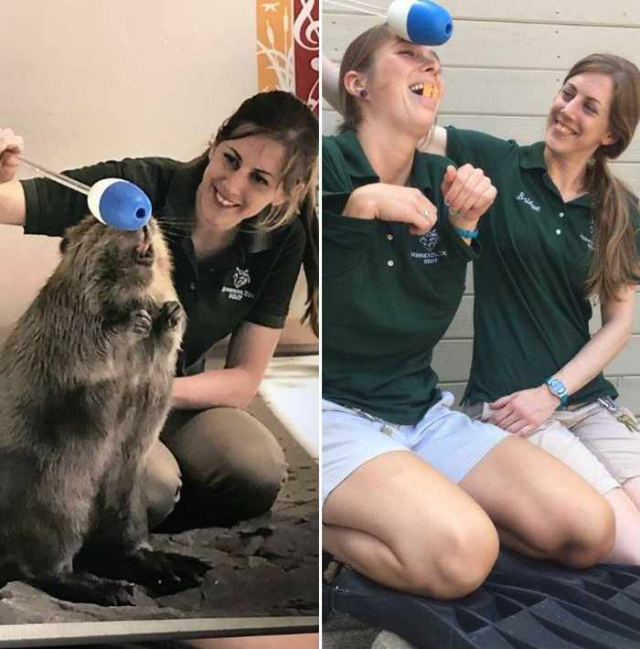 16 Funny Pictures of Zookeepers as Animals Will Make Your Day -08