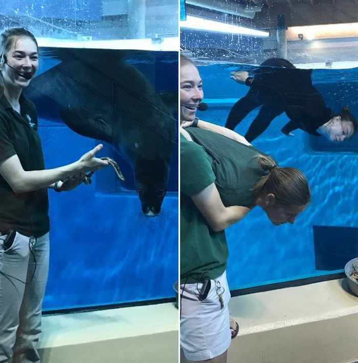 16 Funny Pictures of Zookeepers as Animals Will Make Your Day -09