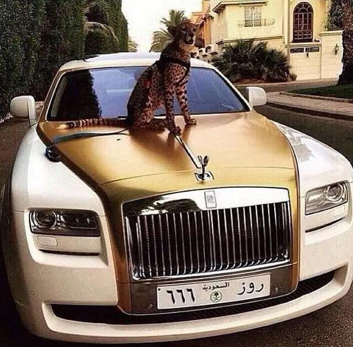 37 Pics of Rich Kids of Saudi Arabia That Will Amaze You -32