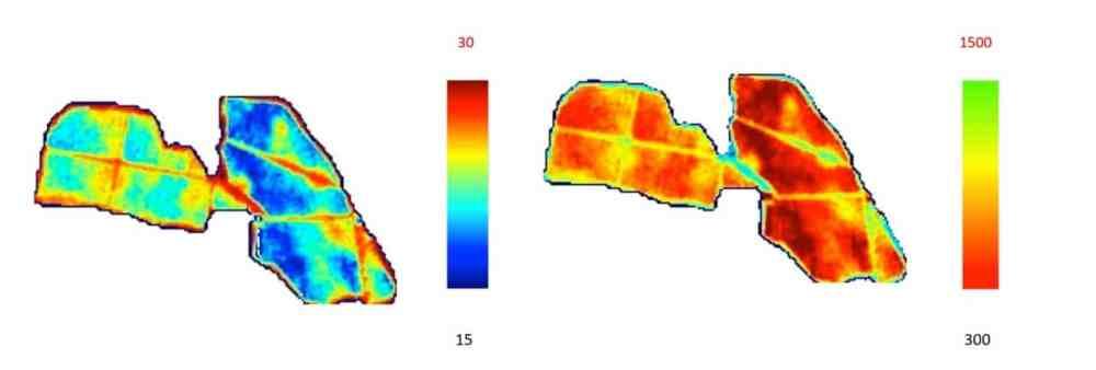 antociani-zuccheri-ndvi Correlazione Parametri Uve e NDVI