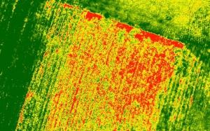 osavi-e1517523355409 Mappe multispettrali