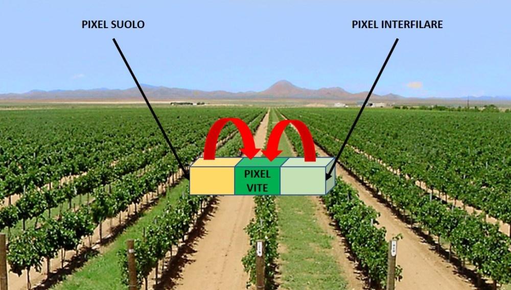 ndvi-pixel-riflettanze Indice NDVI in Viticoltura
