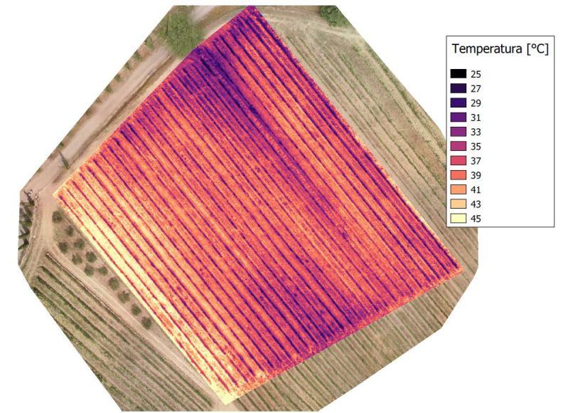 vigneto-mappa-termica-800x581 Università di Pisa