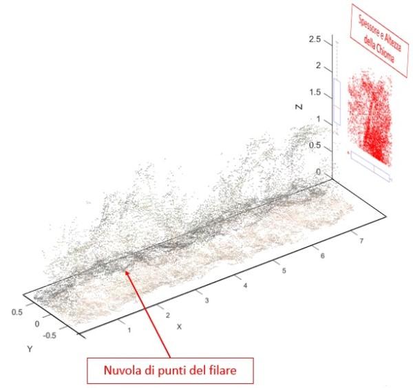 spessore-altezza-chioma-vigneto-600x564 Algoritmi