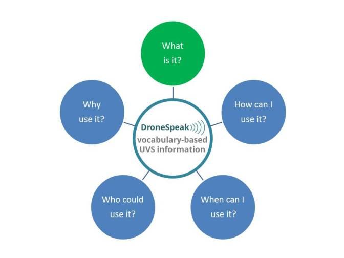 DS vocabulary-based UVS information