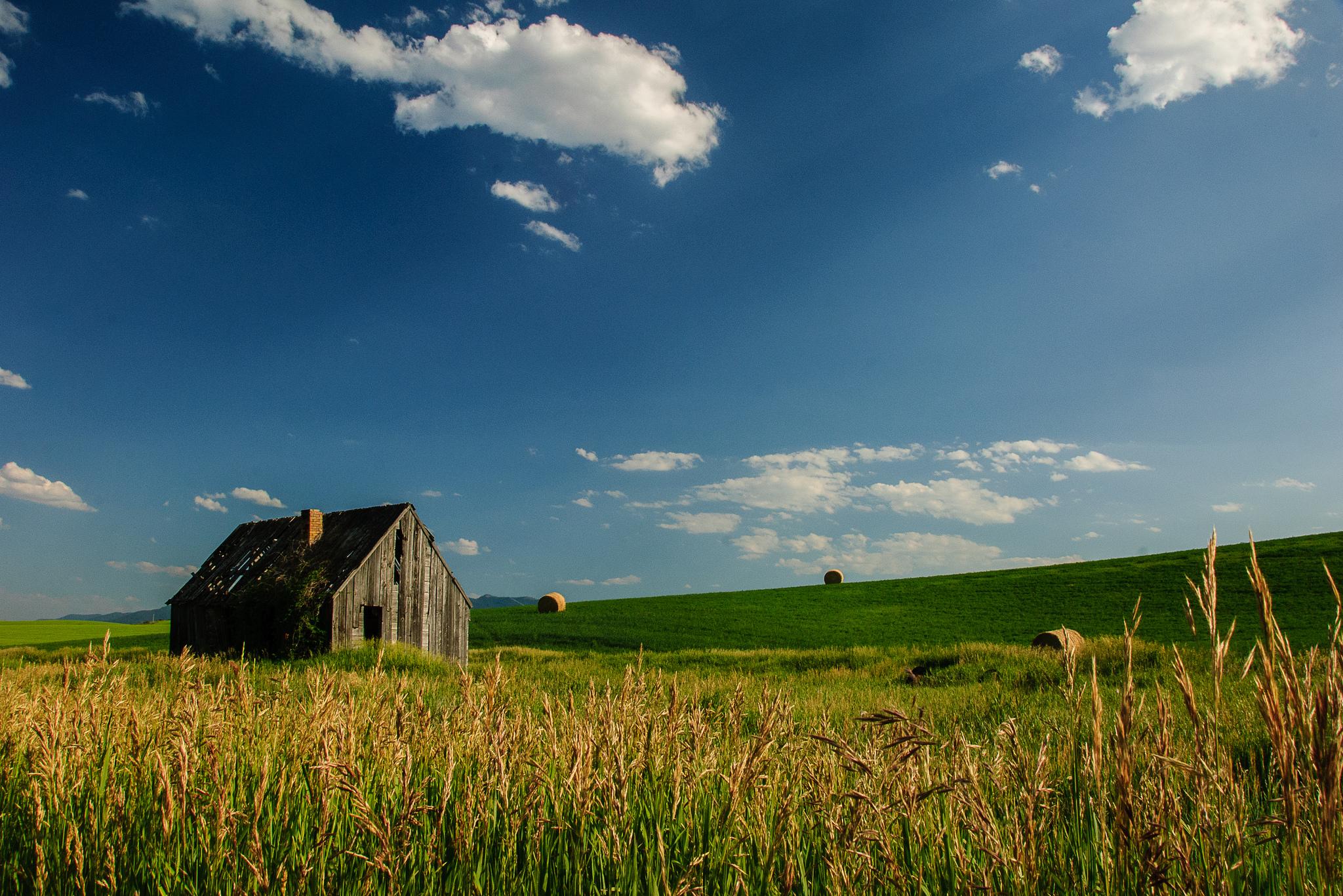 Idaho Barn, Loren Kerns July 10, 2013