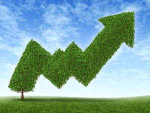 Get online to boost profits