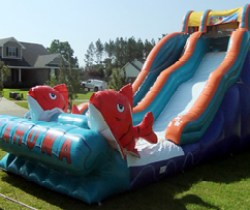 Drop Zone Inflatables - Gulf Shores AL Inflatables, Bounce Houses and Inflatable Water Slides