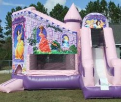 Inflatables & Bouncers Daphne, AL